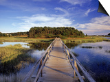 Uncle Tim's Bridge, Wellfleet, Cape Cod, MA Prints by Jeff Greenberg