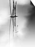Silence Prints by Ursula Abresch