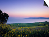 Sea of Galilee, Israel Print by Jon Arnold