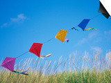 Kites on the Beach, Long Beach, Washington, USA Art by John & Lisa Merrill