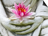 Buddha Hands Holding Flower Art by  anitasstudio