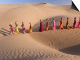 Art Wolfe - Desert Walk Umělecké plakáty