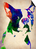 Boston Terrier Watercolor Posters by  NaxArt