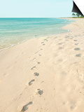 Footprints in Sand at Grace Bay Beach, Providenciales, Turks and Caicos Islands, West Indies Art by Kim Walker