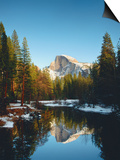 Half Dome Reflected in Merced River, Yosemite National Park Posters av Peter Walton