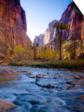 Utah, Zion National Park, the Narrows of North Fork Virgin River, USA Posters by Alan Copson
