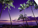 Sunset, Poipu Beach, Kauai, HI Posters by Elfi Kluck