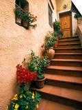 Tuscan Staircase, Italy Prints by Walter Bibikow