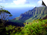View Above the Na Pali Coast, Kauai, Hawaii, USA Print by Christopher Talbot Frank
