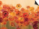 Summer Poppies Prints by Silvia Vassileva
