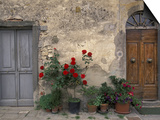 Tuscan Doorway in Castellina in Chianti, Italy Posters by Walter Bibikow