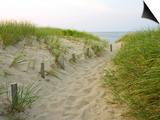 Weg zu Beginn des Meadow Beach, Cape Cod National Seashore, Massachusetts, USA Kunstdrucke von Jerry & Marcy Monkman