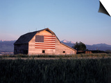 Barn with US Flag, CO Poster von Chris Rogers