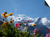 Mont Blanc, Chamonix, Haute Savoie, French Alps, France, Europe Prints by Angelo Cavalli