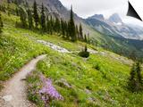Highline Trail To Granite Park Chalet, Glacier National Park, Montana, USA Prints by Jamie & Judy Wild
