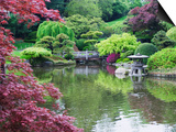 Japanese Garden, Brooklyn Botanical Garden, Brooklyn Prints by Christian Kober