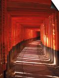 Fushimi-Inari Taisha Shrine, Japan Print by Gary Conner