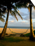 Ship Wreck Beach and Hammock, Kauai, Hawaii, USA Posters by Terry Eggers
