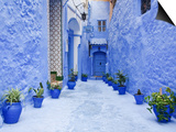 Blue Painted Alley Lined With Flower Pots Leading to Doorway, Chefchaouen, Morocco, North Africa Prints by Guy Edwardes