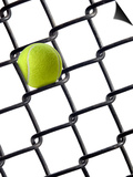 Tennis Ball in Fence Art by Martin Paul