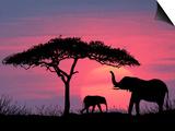 Silhouette of Elephants and Tree Prints by David Davis