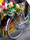 Dutch Flower-Power Bike Poster by Magda Indigo