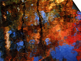 Reflection of Red Maples and Blue Sky in Creek, Sedona, Arizona, USA Posters by Margaret L. Jackson
