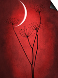 Under the Moon 2 Prints by Philippe Sainte-Laudy