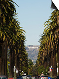 Hollywood Hills and the Hollywood Sign, Los Angeles, California, USA Posters by Kober Christian