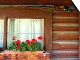 Fly Fishing Rods on Cabin Wall, Lake City, Colorado, USA Print by Janell Davidson