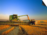 Farmer Unloading Wheat from Combine Near Colfax, Washington, USA Kunst af Chuck Haney