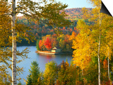 Summer Home Surrounded by Fall Colors, Wyman Lake, Maine, USA Posters by Steve Terrill