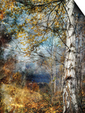 Kootenay Fall Prints by Ursula Abresch