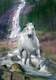 Bob Langrish Waterfall Poster
