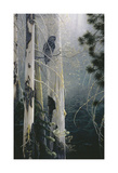 Silent Sentinel (Owl) Prints by Stephen Lyman