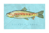 Rainbow Trout Posters by John W. Golden