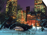 NYC, Central Park Snow and Plaza Hotel Prints by Rudi Von Briel