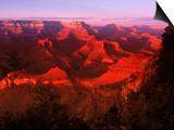 Grand Canyon National Park, AZ Print by Gary Conner