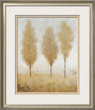 Autumn Springs I Framed Giclee Print by Tim O'toole