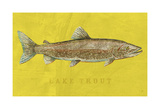 Lake Trout Prints by John W. Golden