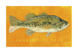 Largemouth Bass Prints by John W. Golden