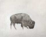 Buffalo (left) Plakater af Jacqueline Neuwirth