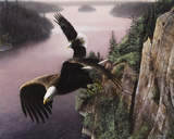 Wings Over the St. Croix Poster von Kevin Daniel