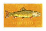 Brook Trout Prints by John Golden