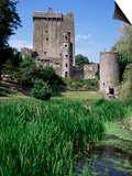 Blarney Castle, County Cork, Munster, Eire (Republic of Ireland) Print by J Lightfoot