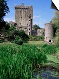 Blarney Castle, County Cork, Munster, Eire (Republic of Ireland) Print by J Lightfoot