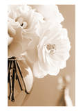 Roses in Sepia Posters par Christine Zalewski