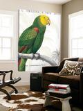 Parrot Botanique I Posters