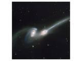 NASA - NGC 4676 Colliding Galaxies Posters