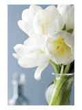 White Tulips Bouquet Posters by Christine Zalewski